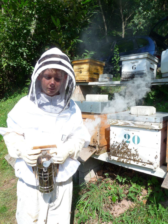 Elian et ruches